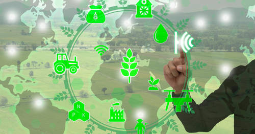 Smart Agriculture: Qlik Style