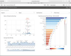 Demo Executive Dashboard