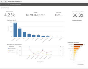 Qlik Demo human capital management-b